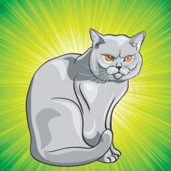Boyama Kedi Ve Yavru Kedi çocuklar Için Boyama Sayfaları