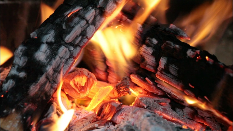 Fireplaces HD screenshot-1