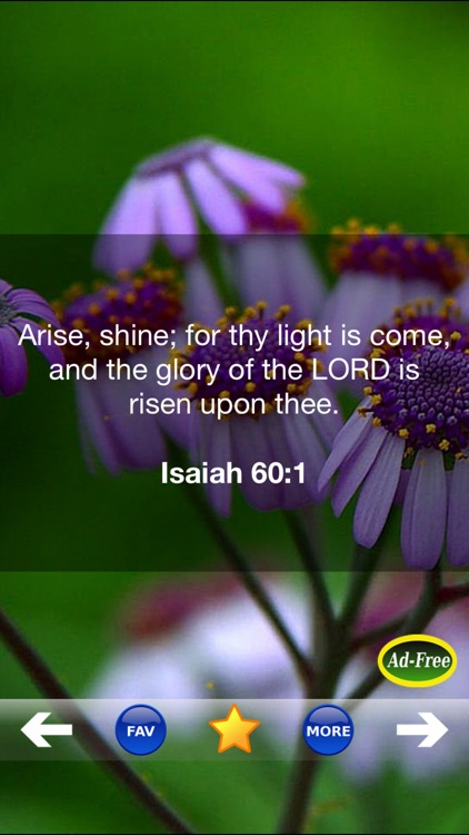 Inspirational Bible Verse of the Day FREE! Daily Bible Inspirations, Scripture & Christian Devotionals!