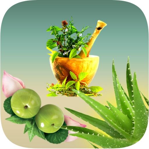 Natural Ayurvedic Healer Remedies Herbal