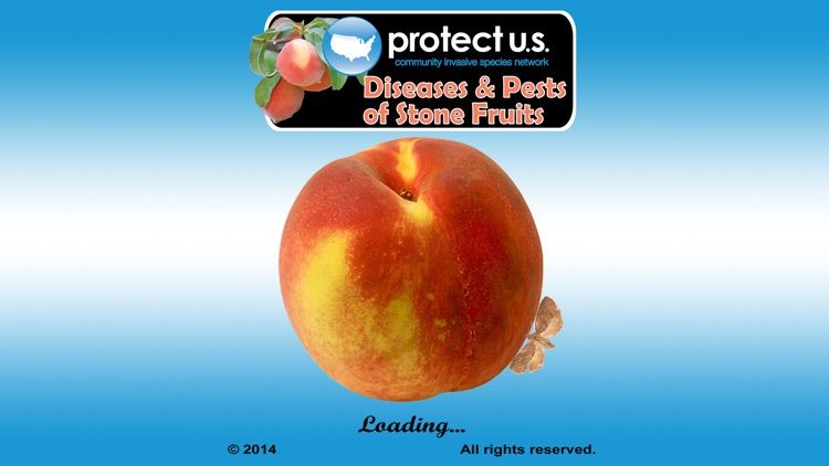 Pests of Stone Fruits