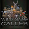 Aaron Newnham - WILD GAME CALLER artwork