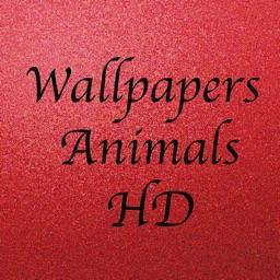 Wallpapers Animals HD - خلفيات حيوانات