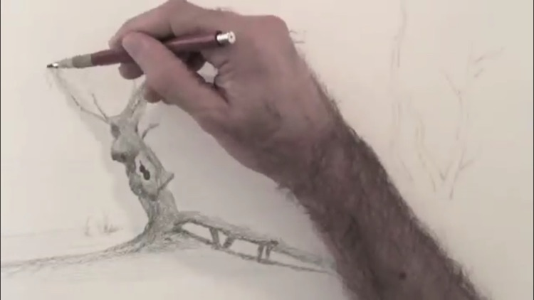 Teach Yourself To Draw screenshot-3