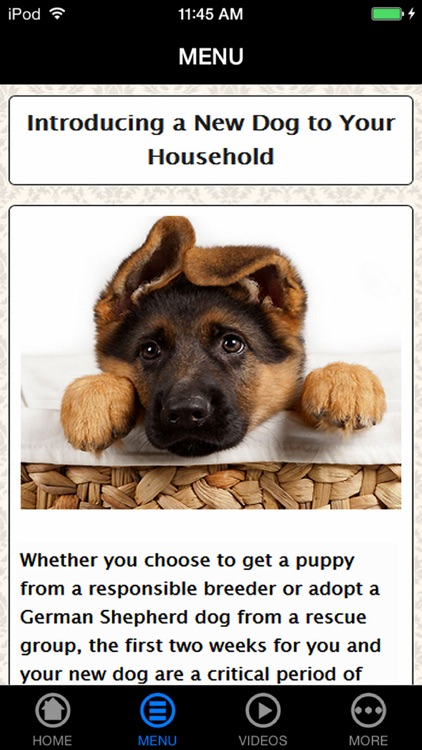 German Shepherd Puppy Training Made Easy - Best Guide & Tips For Beginners screenshot-3