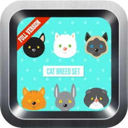 Learn English Via Cats Names Games for Kids