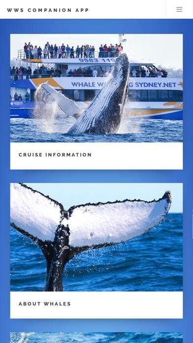点击获取Whale App