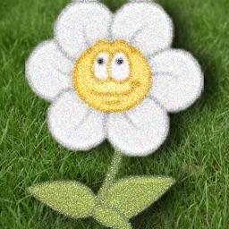 Grow: Water the Garden Flowers