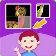 宝宝 幼儿 儿童最爱的侏罗纪 恐龙益智拼图游戏 - 男孩女孩都喜爱的开发智力的活动