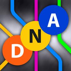Activities of NYC Subway ING