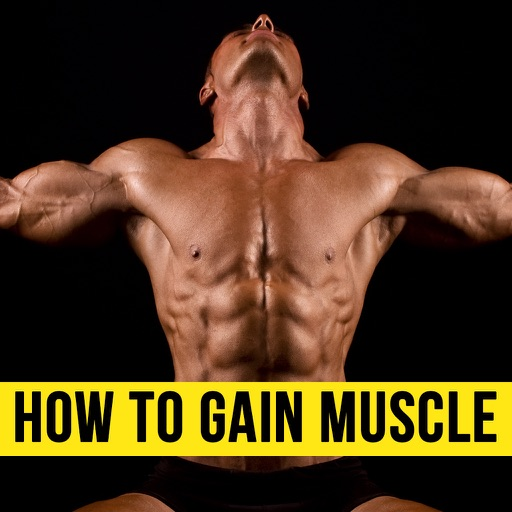 How to Gain Muscle From Basics - Learn the Tricks