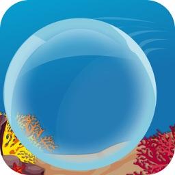 Bubble Rise