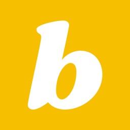 Bandflyr