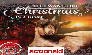 ActionAid Sweden Xmas Goats