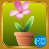 Mini Garden HD