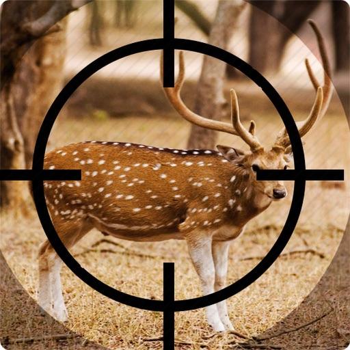 Real Deer Hunter