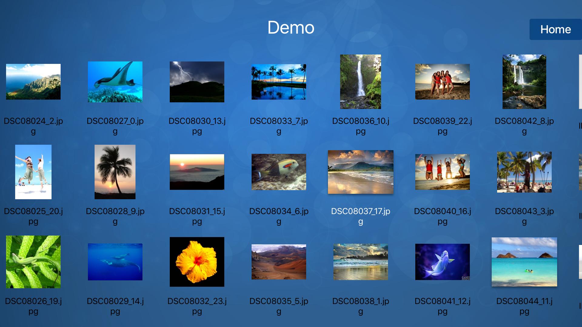 FE File Explorer Pro TV screenshot 2