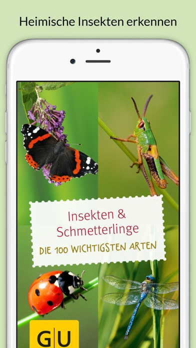 insekten bestimmen die besten apps zum erkennen von insekten giga. Black Bedroom Furniture Sets. Home Design Ideas