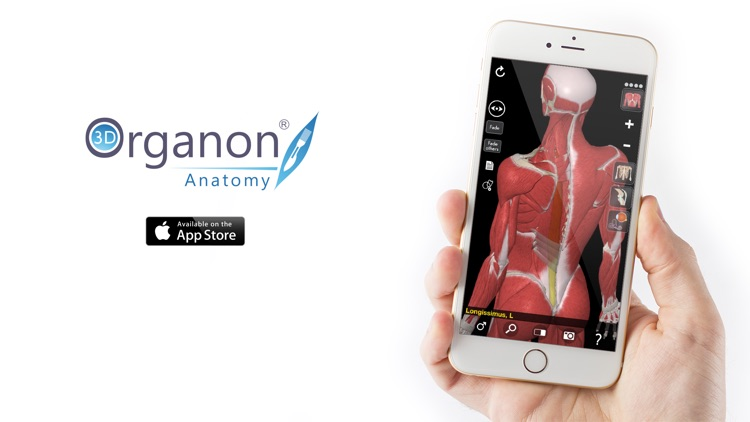 3D Organon Anatomy - Muscles, Skeleton, and Ligaments screenshot-3