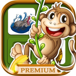 Animals memory game for brain training - Pro