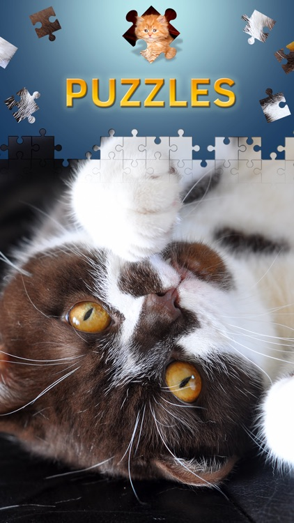 Cats Jigsaw Puzzles 2017
