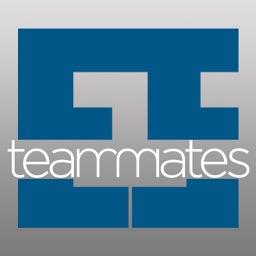 Excelsior Staffing Teammates