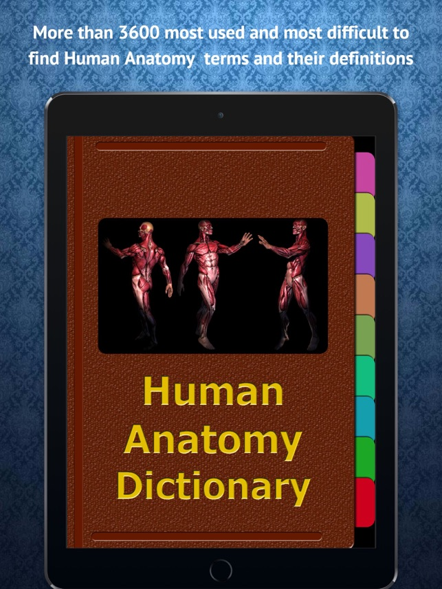 Human Anatomy Dictionary on the App Store