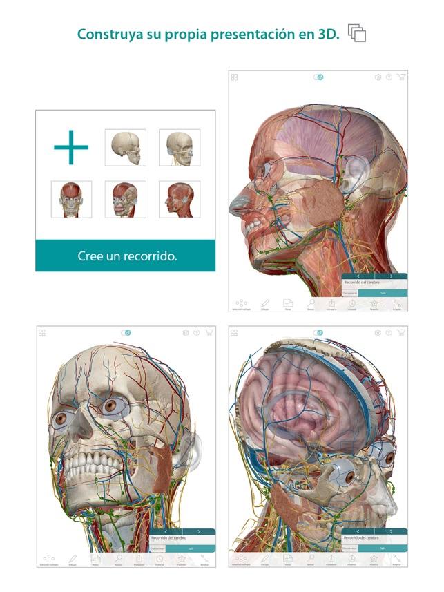 Atlas de anatomía humana en App Store