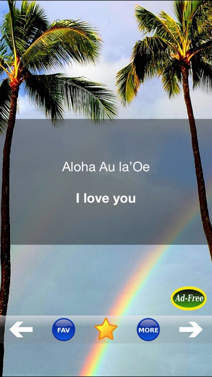 Hawaiian Words & Phrases! Hawaii Dictionary and Casual Language Translation Guide screenshot-3