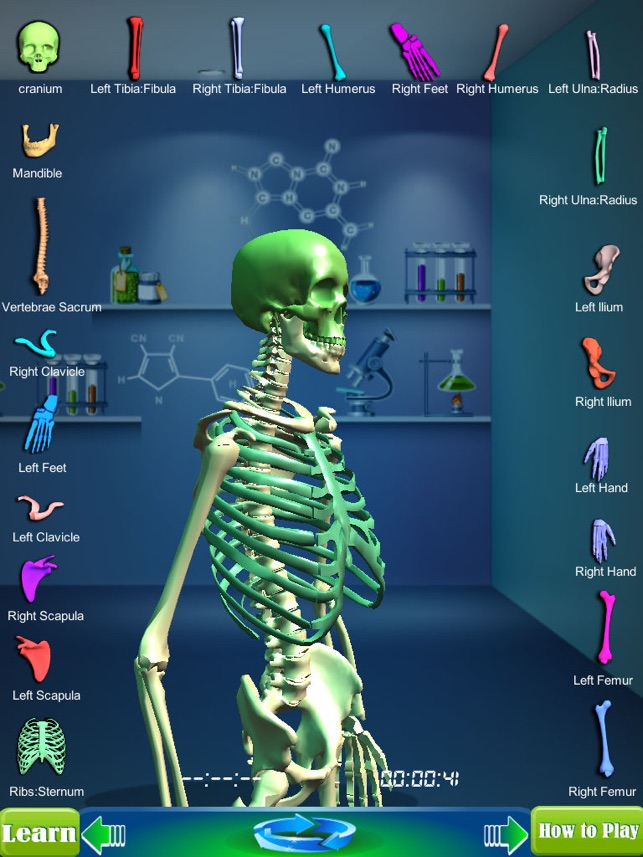 Gm4l Skeleton Bone Game On The App Store