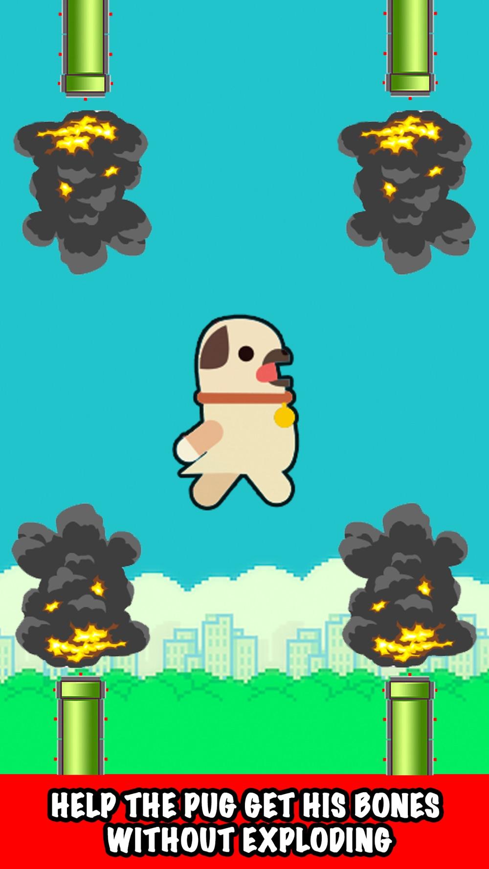 Go Flappy Pug Cheat Codes