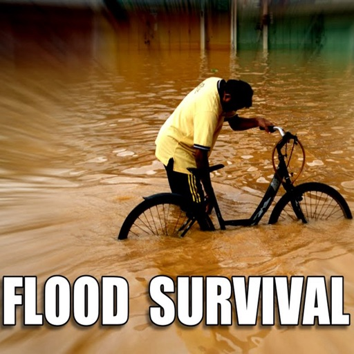 Flood Survival:Tips and Tutorial