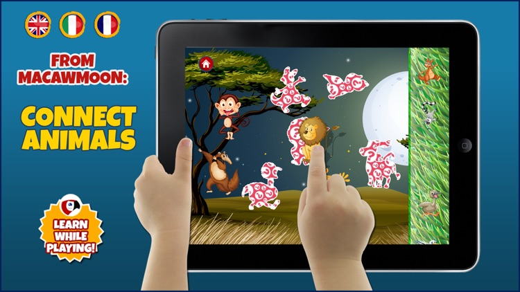 Discovery the animals - counting with interactive fauna zoo ocean wild - Macaw Moon