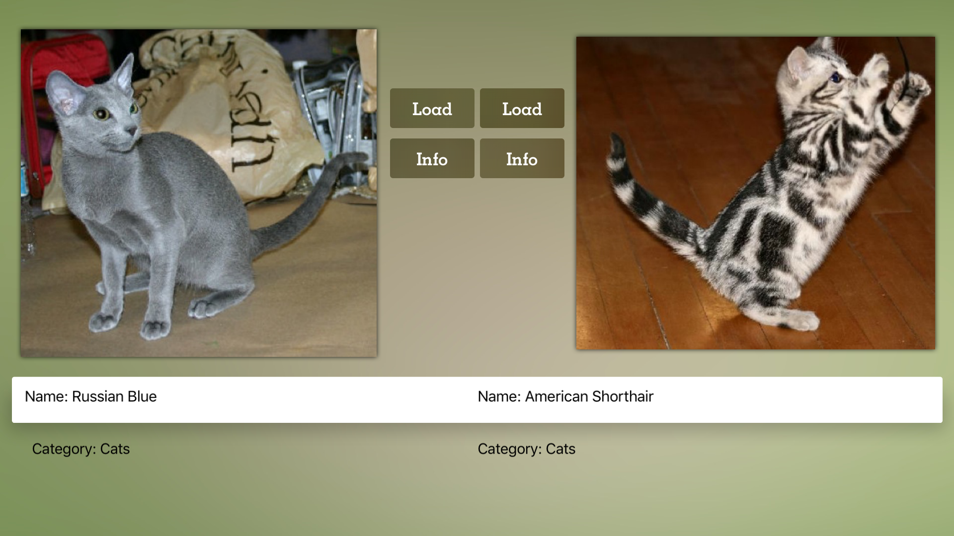 Cat Breeds Guide screenshot 18