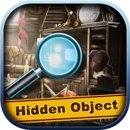 Washington Crimes - Hidden Object
