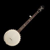 Banjo Tuner Simple app review