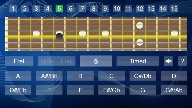 Fretboard Guru For Guitar