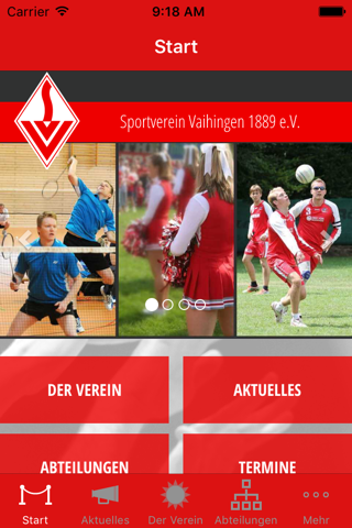 SV Vaihingen - náhled