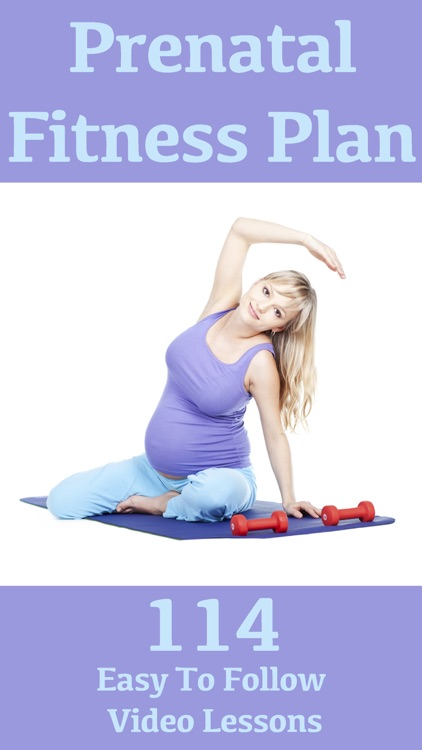 Prenatal Fitness Plan