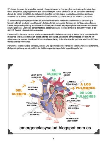 Anatomía y fisiología del sistema cardiovascular por 86IMD en iBooks