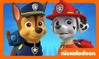 PAW Patrol Rescue Run HD