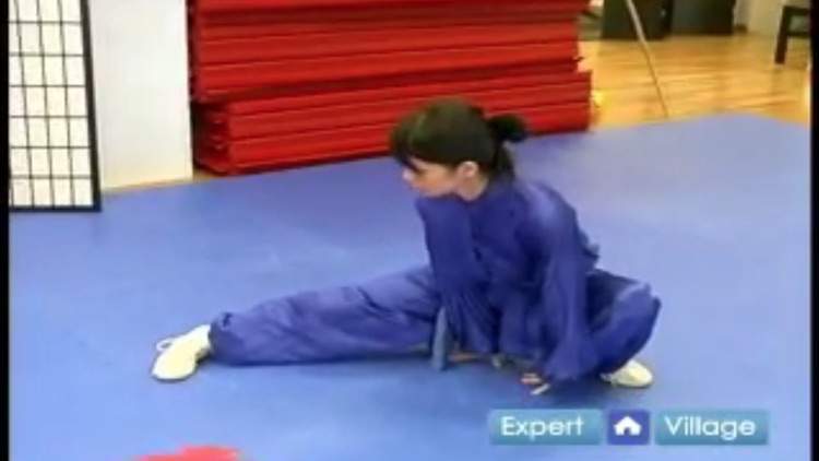 Wushu Training screenshot-4