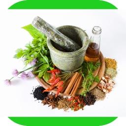 Medicinal Herbal Plants & Cures Herbs Free