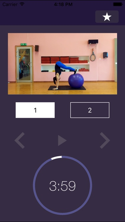 Stability Ball Exercises – Swiss Exercise Program for Strength and Physically Strong Gym Body screenshot-3