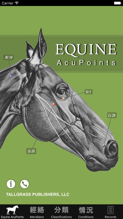 Equine AcuPoints