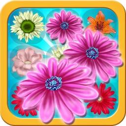 Flowers Deluxe: Strike Mania