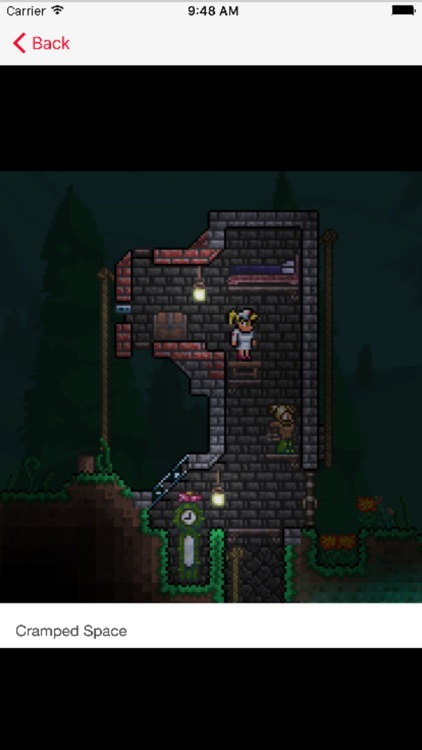 Multiplayer PvP for Terraria screenshot-3