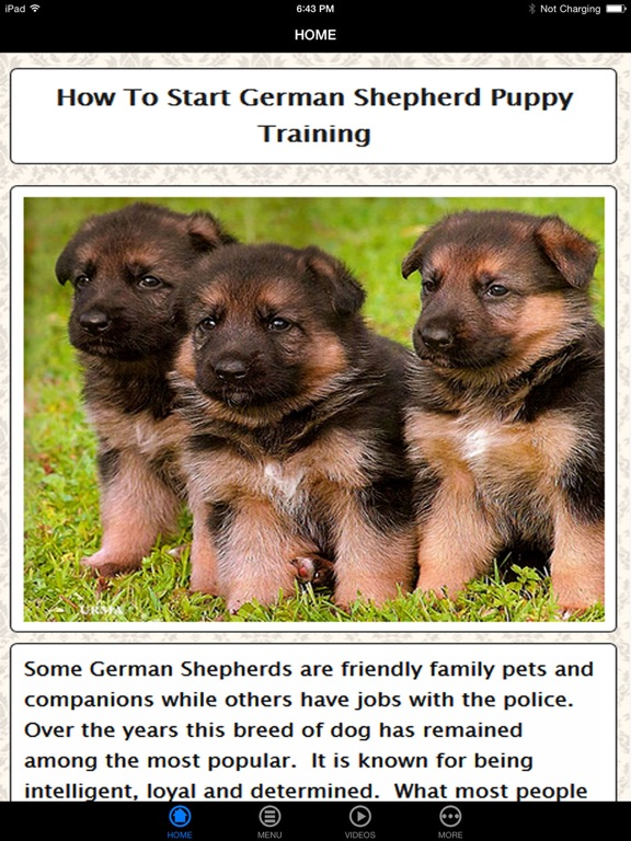 German Shepherd Puppy Training Made Easy - Best Guide & Tips For Beginners  | App Price Drops