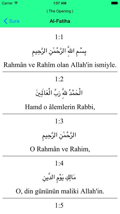 Al Quran - Turkish screenshot two