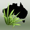 Environmental Weeds of Australia